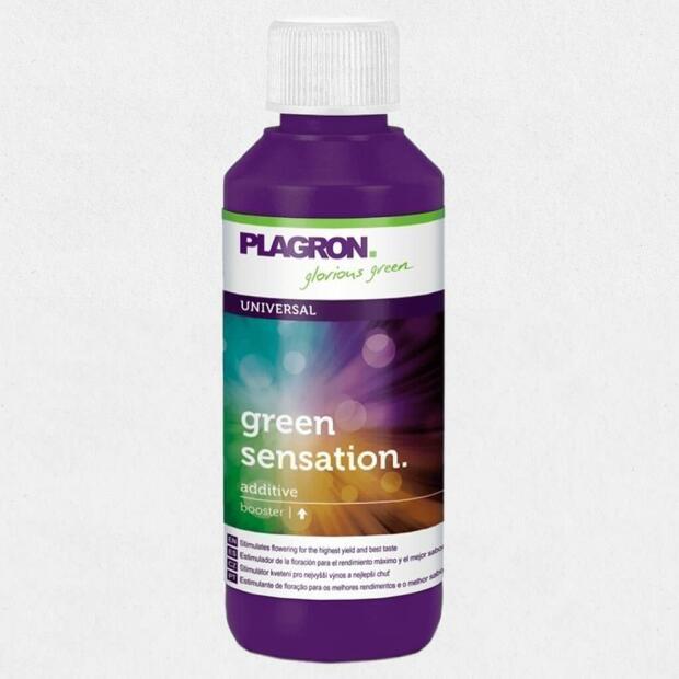 Plagron Green Sensation Blütenaktivator 0,25 Liter
