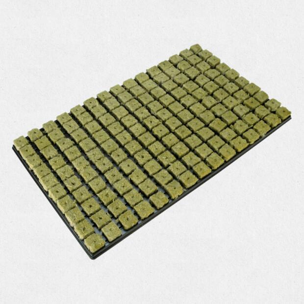 Grodan Stecktray 2x2 cm - Tray 150